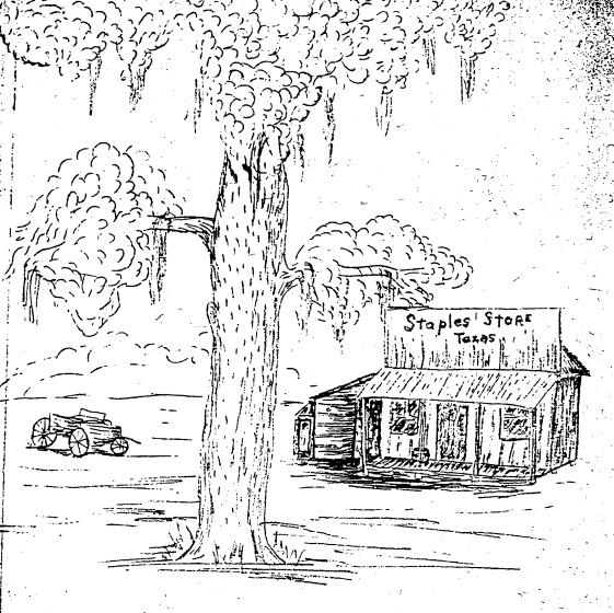 artists rendering of the Staples Store circa 1870 based on an actual photograph